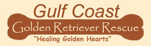 Gulf Coast Golden Retriever Rescue