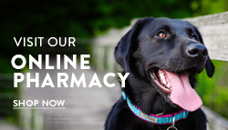 Online Pharmacy - Sarasota Animal Hospital