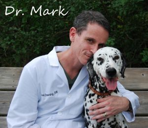 Dr. Mark Downing - Sarasota Animal Hospital